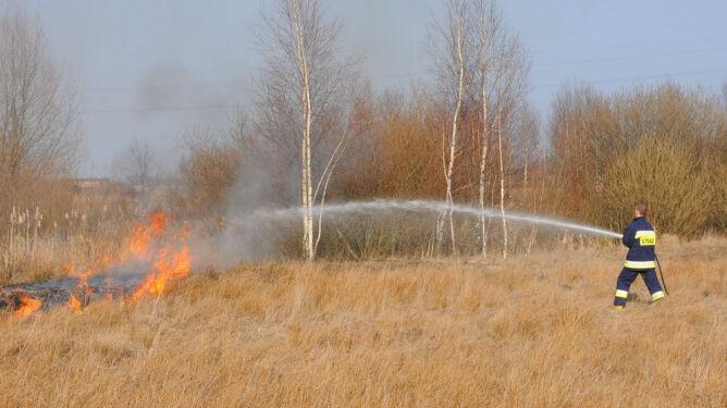 Pogoda pożarowa w polskich lasach. Zagrożony cały kraj