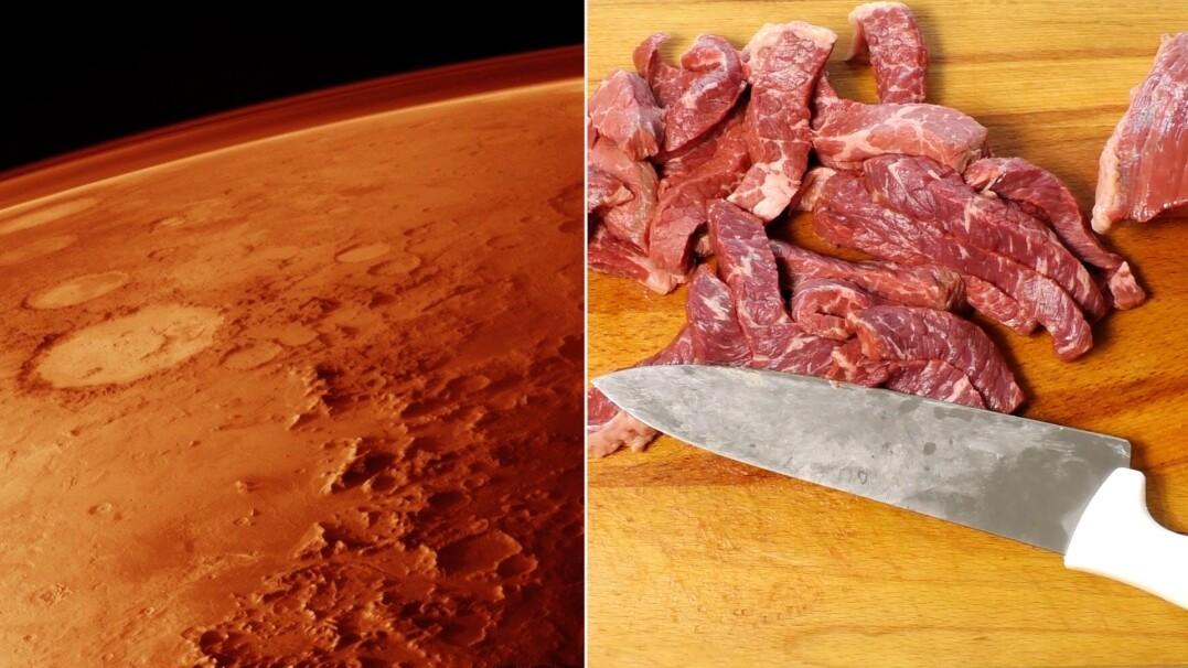 Produkcja mięsa na Marsie i Księżycu? Pracuje nad tym izraelska firma