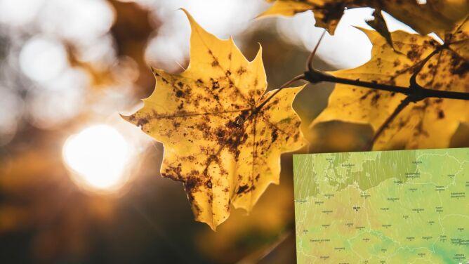Pogoda na Wszystkich Świętych 2020. Prognoza pogody na 1 listopada