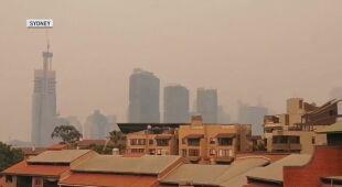 Gęsty smog dusi Sydney